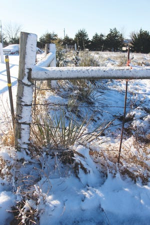 Crunchy snow-crusted fenceposts and yucca plants were the results of a rain and snow storm that hit the area on Tuesday, November 24,  carrying over into Wednesday. By Thanksgiving most snow was melted.