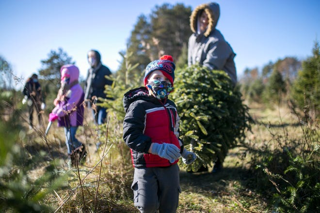 Zayne Charbonneau, 4, and his dad, Tyler Charbonneau, of Polo carry their fresh-cut Christmas tree to a cart at Williams Tree Farm on Tuesday, Dec. 1, 2020, in Rockton.