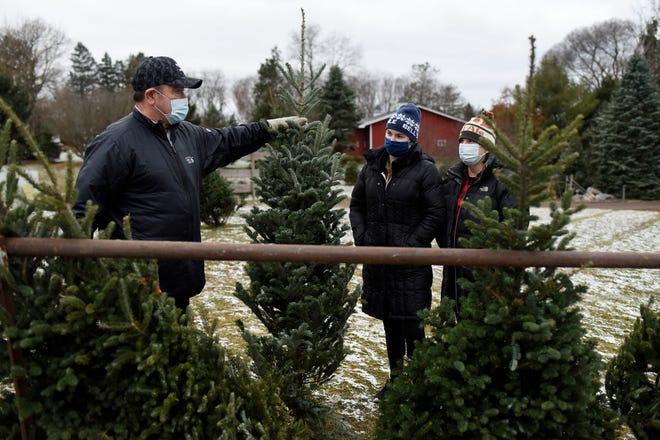 Scott McCann, Jordan McCann and Mariclare McCann scope out Christmas trees on Monday, Nov. 30, 2020 at Wilson's Tannenbaum Farm in Battle Creek.