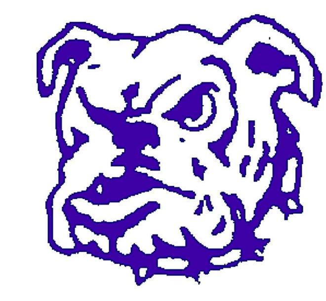 Brookfield HS Bulldogs