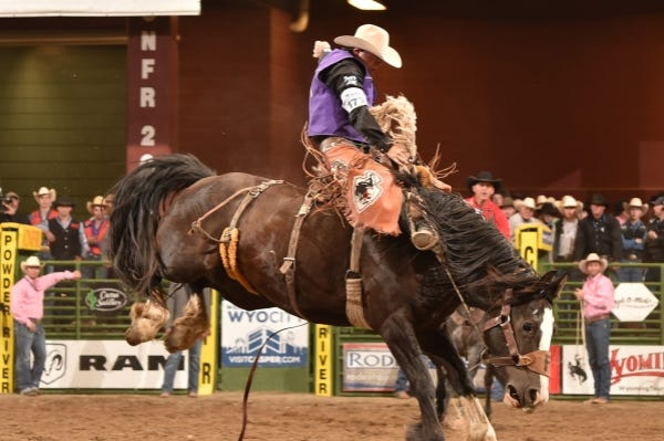 The 2020 edition of the Professional Rodeo Cowboys Association National Finals Rodeo will have a distinct Tarleton State University flair. Fourteen riders and ropers in seven events either are current or past members of the storied Tarleton rodeo team.