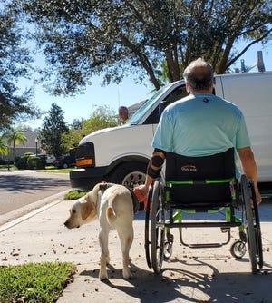 Bob Calderon and service dog Mae often find the sidewalks in their east Manatee neighborhood blocked by cars.