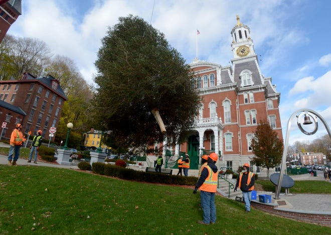 Norwich Public Works and Lindon Tree Service crews work on putting up a 25-foot Christmas tree in the front of Norwich City Hall in 2018.