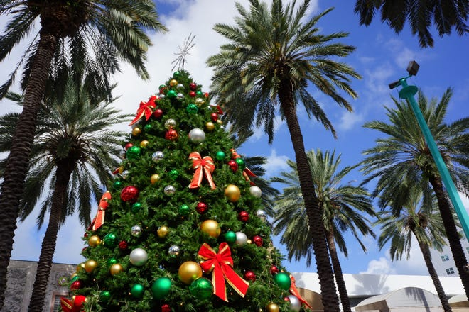 There are still plenty of ways to enjoy the holidays – especially in sunny South Florida.