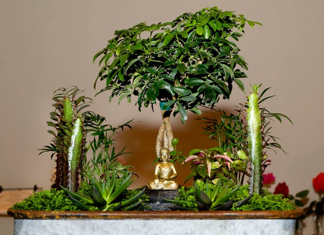 """Christina Kramer won a first place for her miniature garden entry during the Garden Club of Palm Beach  2019 """"Gold Leaf"""" Biennial Flower Show at The Society of the Four Arts. (Meghan McCarthy/Palm Beach Daily News.)"""