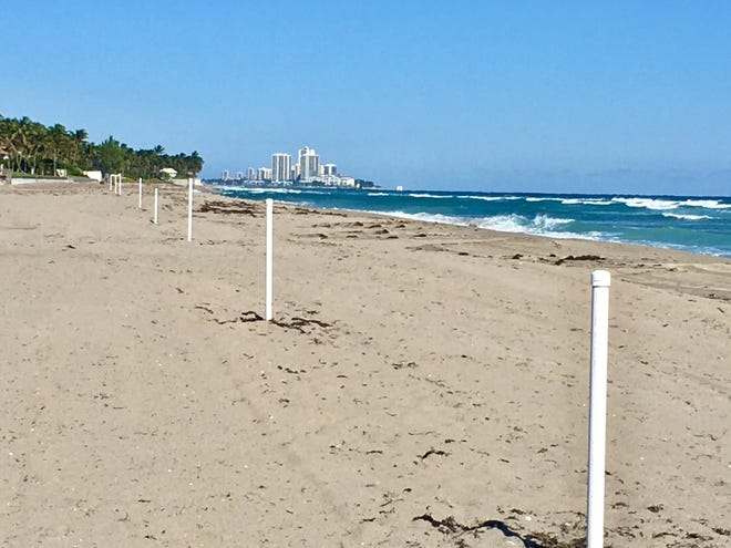 Posts in the sand in Palm Beach denote private beach ownership to the west and the public beach to the right. Residents along this strip say the previously lightly-used beach was overrun after coronavirus restrictions.