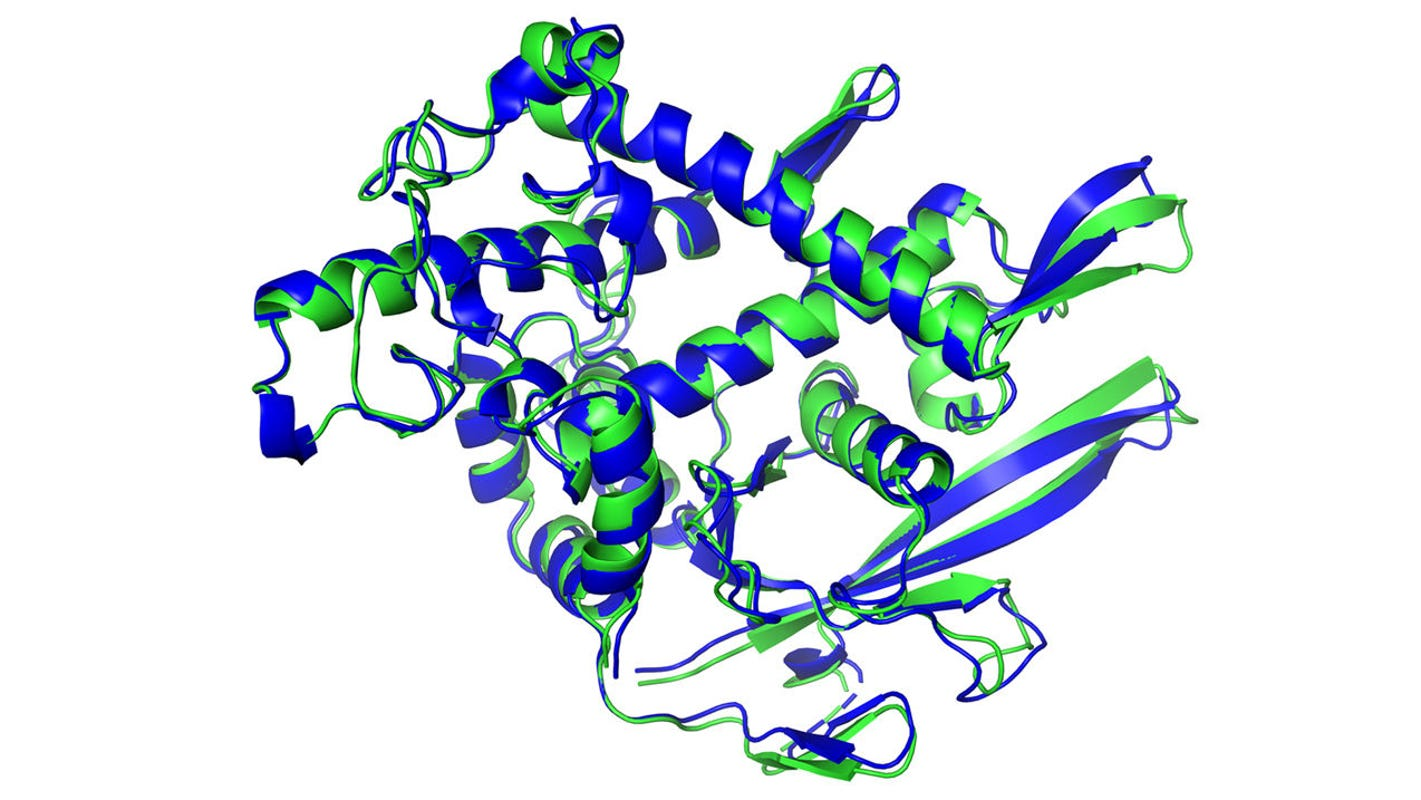 'Stunning advance' on 'protein folding': A 50-year-old science problem solved and that could mean big things