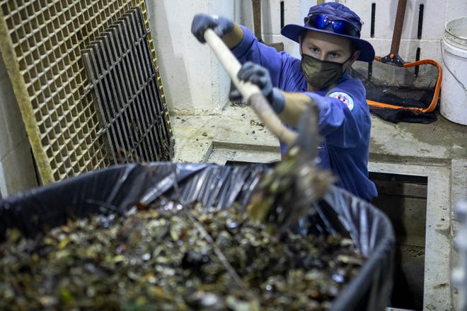 To keep zebra mussels out of Austin Water's raw water infrastructure, the utility has started taking more aggressive steps to mitigate the effects of the troubling critters, such as routinely cleaning and removing shells from screens and other infrastructure.