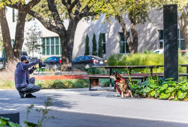 Adam Taylor takes photos of his dog Grizzly Bear in front of the monolith erected on the Austin Community College Highland Campus on Friday. Overnight, the college's Welding Department installed a custom-made monolith at the Jacob Fontaine Plaza.