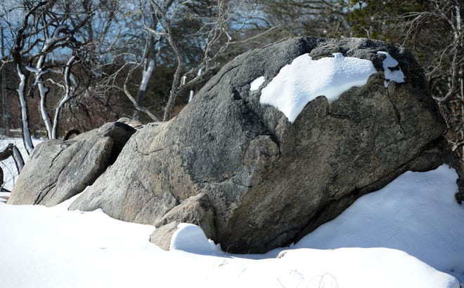 A large rock outcrop along Route 6A takes on the appearance of a surfacing whale with the addition of some well-placed snow from a 2018 blizzard. {Steve Heaslip/Cape Cod Times file]   031518sh05