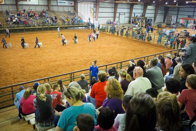 The Mayor arena at Loy Park fills up as the goat showing gets underway in 2017.  The city finalized efforts to bring Loy Park into Denison this week when it formally annexed the property into Denison.