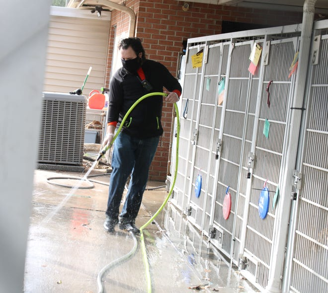An employee cleans off the concrete at the Lenoir County SPCA on Friday, Dec. 4.