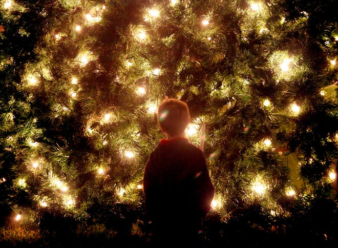 Wellington will light its Christmas tree in a virtual ceremony this weekend.