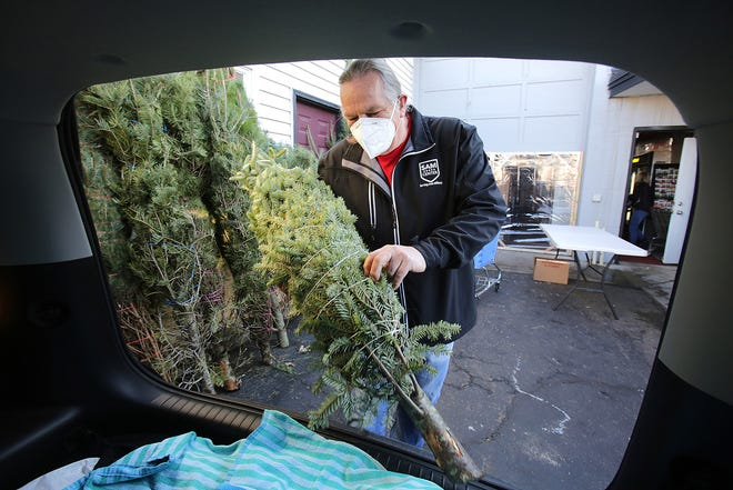 Dave Bowman, operations manager for the Serving Area Military (SAM) Center in Massillon, places a blue spruce inside a car Friday afternoon. The center has about 50 trees available that are free to those with U.S. military ties, including veterans, active-duty personnel and family members.