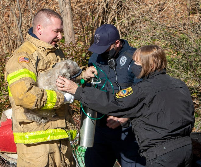 A dog was rescued by Charlton Firefighters during a two-alarm fire at 19 South Sturbridge Road on Thursday