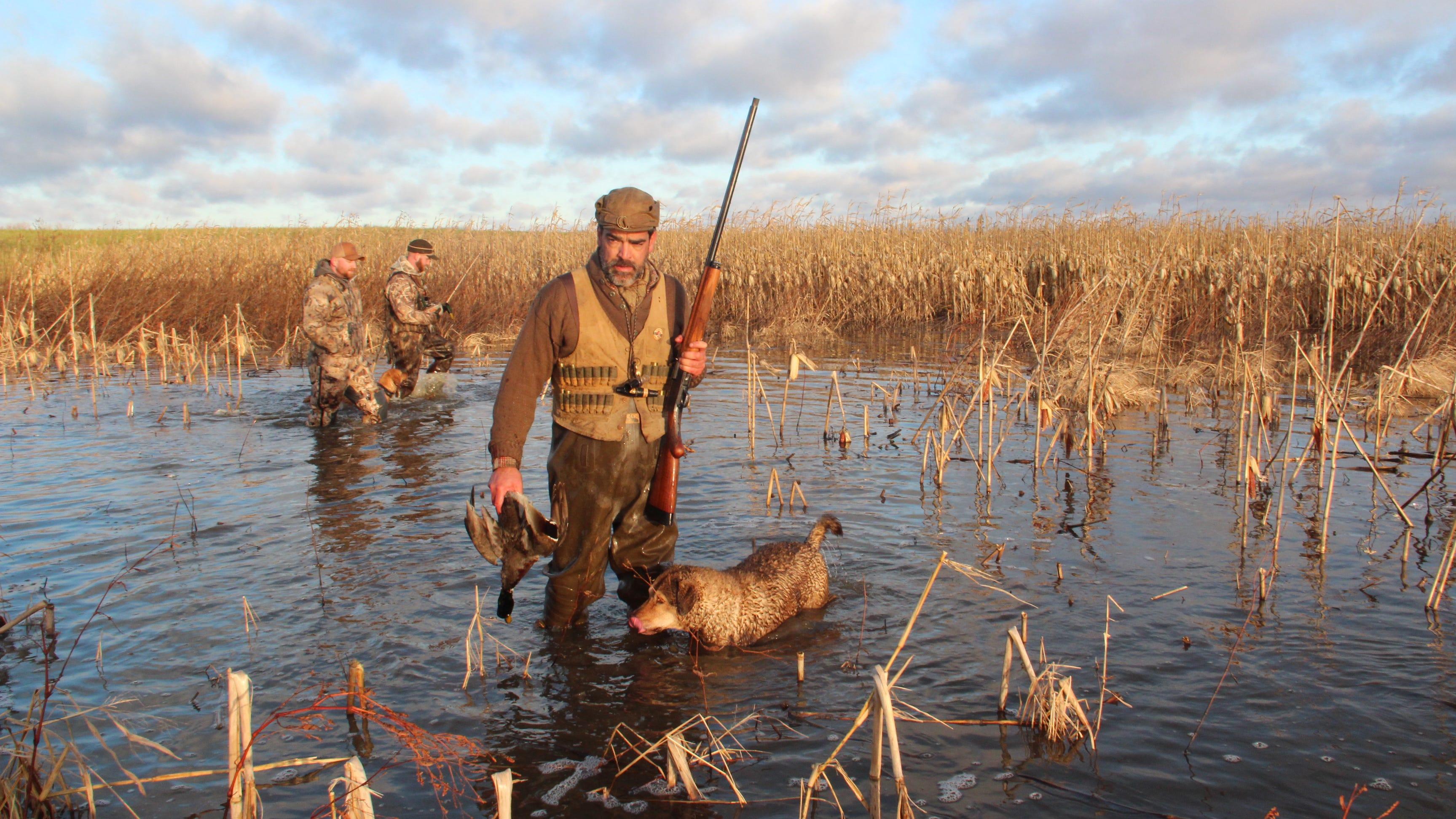 Smith: Ducks provide Armistice Day bounty on 2020 hunt
