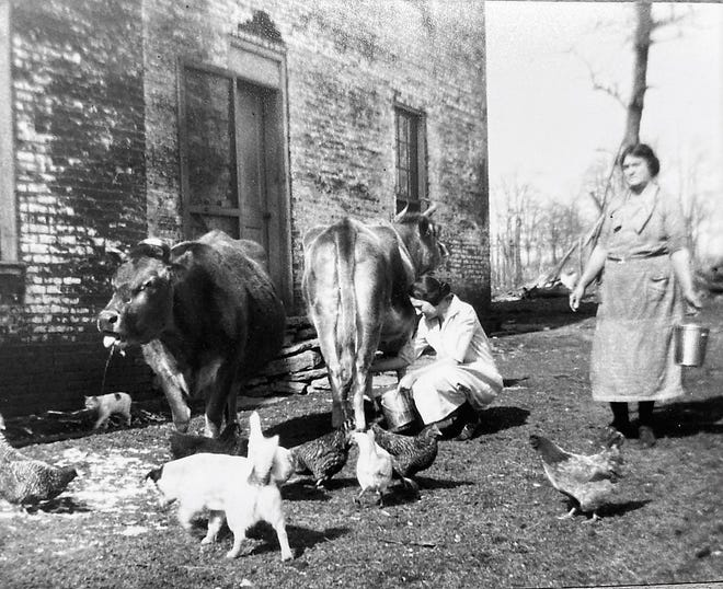 There was nothing easy about farm life on a Kentucky farm in the 1920s. Members of the William Kirby family milk cows and tend chickens.