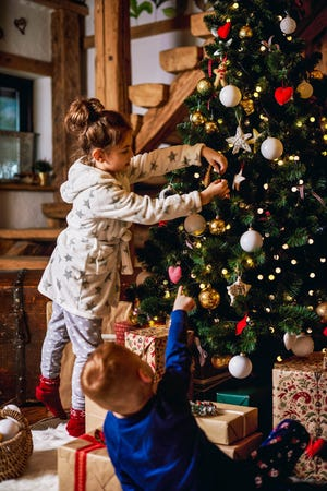 Decorating with evergreen trees did not start as a Christmas tradition at all.