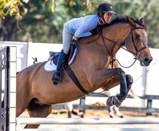 A supple rider is a more effective rider who uses hands, legs and seat to communicate with the horse.