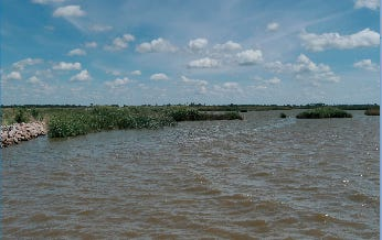 Water in Little Salt Marsh at Quivira National Wildlife Refuge in Stafford County is a vital resource for nearby farming communities as well as for wildlife in the area.
