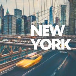 Holly, Jolly New York