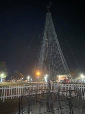 Pembroke Christmas tree