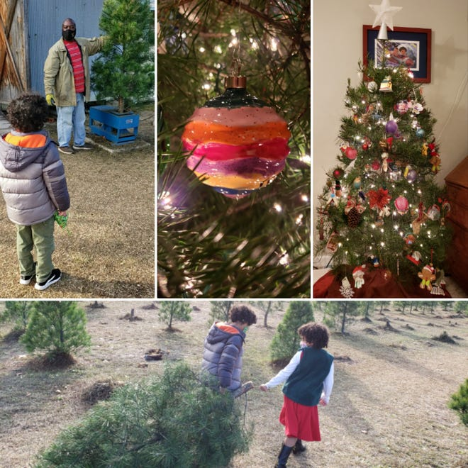 Myron B. Pitts' family took an annual visit to B&D Christmas Tree Farm on Elliot Farm Road in north Cumberland County on Sunday, December 6, 2020. Clockwise from bottom: Samuel and Helen Ann haul the chosen tree, a Virginia pine; Samuel watches as Reggie Barnes of B&D operates a tree shaker; an ornament by Helen Ann that she painted from Greg's Pottery; the tree at home on Monday.