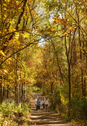 Hikers walk beneath a canopy of autumn leaves on Saturday, October 10, at Good Earth State Park in Sioux Falls.