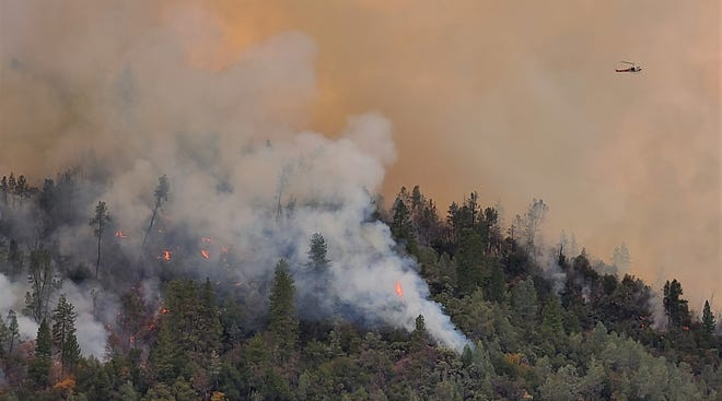 The Shasta-Trinity National Forest conducts a controlled burn Friday, Dec. 11, 2020, near the Silverthorn area at Lake Shasta north of Jones Valley. The 411-acre Bear Mountain project is meant to reduce the severity of future wildfires.