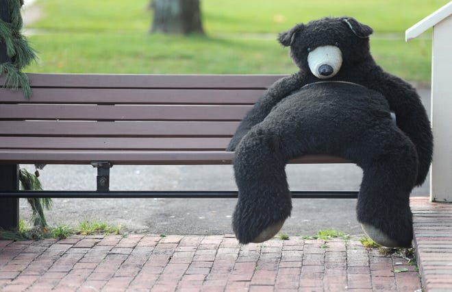 The Kandy Korner's mascot bear takes the afternoon off to soak up some mild weather along Main Street Hyannis.
