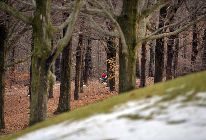 WORCESTER - A man rides a dirt bike in the woods near the Memorial Grove of trees honoring World War I veterans on Sunday.