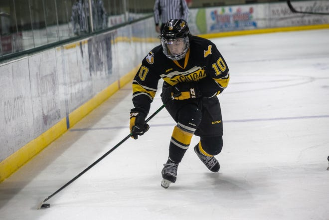 Jake Crespi of Brighton scored his first college hockey goal for Michigan Tech Sunday in a victory at Bemidji State.