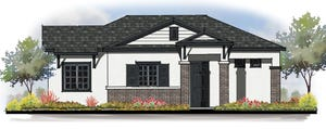 Avilla Suncoast in Tampa is a community of new houses for rent instead of for sale. The builder is interested in building in South Florida, including in Palm Beach County. Photo courtesy of NexMetro Communities.