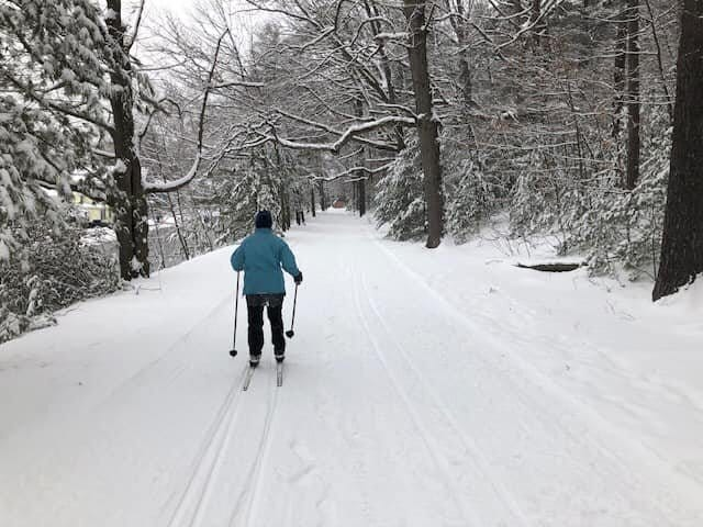 A cross-country skier travels along the Nordic Ski Park at Newton Hill at Elm Park in Worcester.