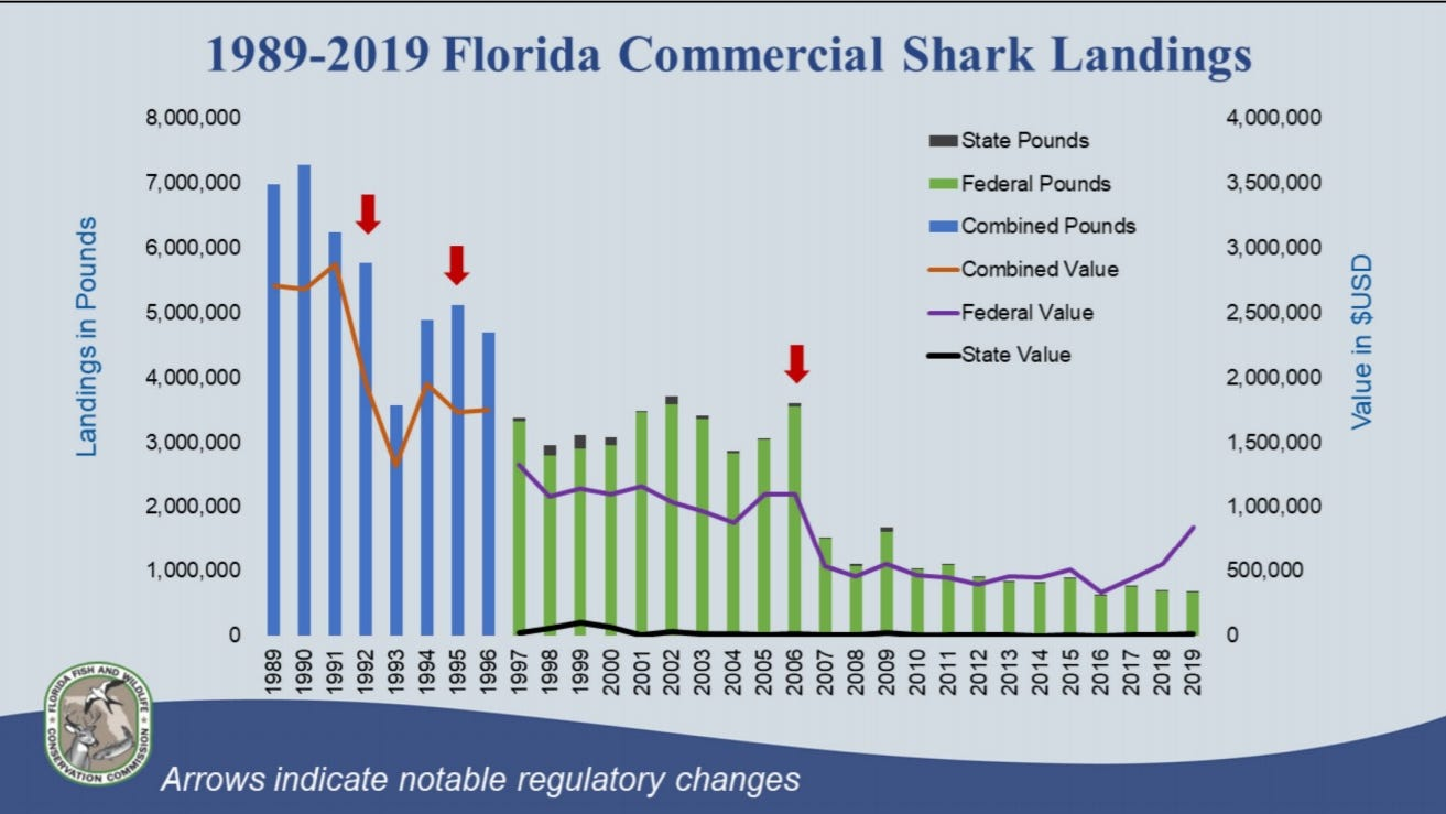 Florida's commercial shark landings have declined since government tightened up fishing regulations.