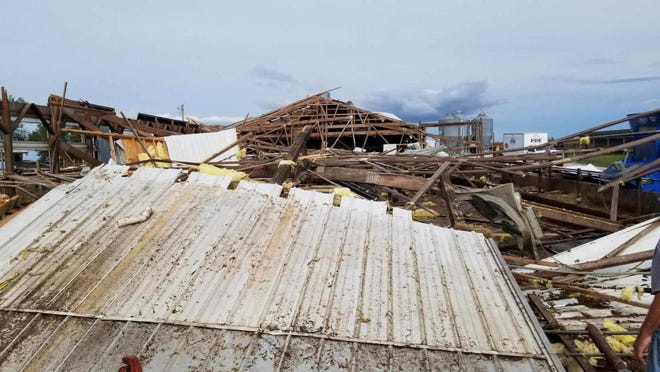 When hurricane-force sustained winds blew through Iowa on August 10, one of the many casualties in Iowa farm country was the freestall barn at Brian and Kristen Schanbacher's farm – though the section of the barn that holds their two robot milking units was spared. The barn's destruction meant they had to move their cows to the dairy barns of friends and neighbors. They likely won't be able to milk their cows again at home until some time next year.