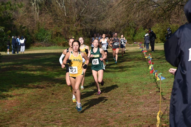 Tiffany Herrera, a junior at Saint Mark's High School, took first place in the Division II High School Cross Country State Championship.