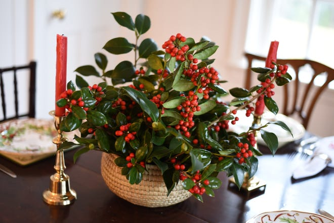 This eye catching centerpiece is made up of Burford holly.