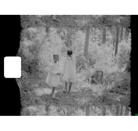 """An image from Allison Janae Hamilton's """"Wakulla Cathedral, 2019,"""" a video featured in the new Ringling Museum exhibition """"For Real This Time."""""""