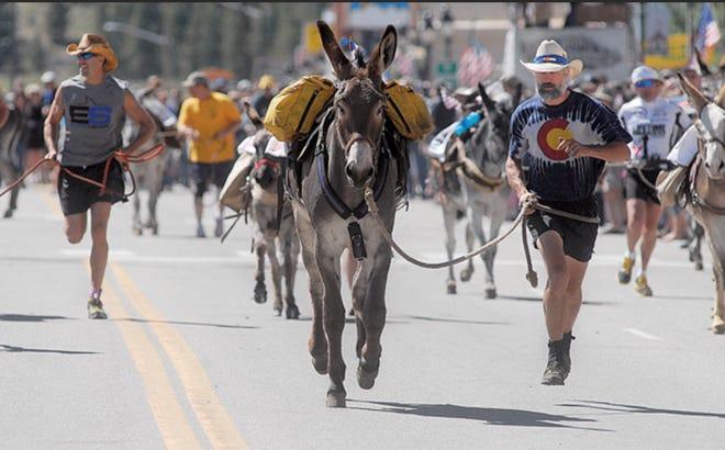 The 2020 burro racing season began in May in Colorado.