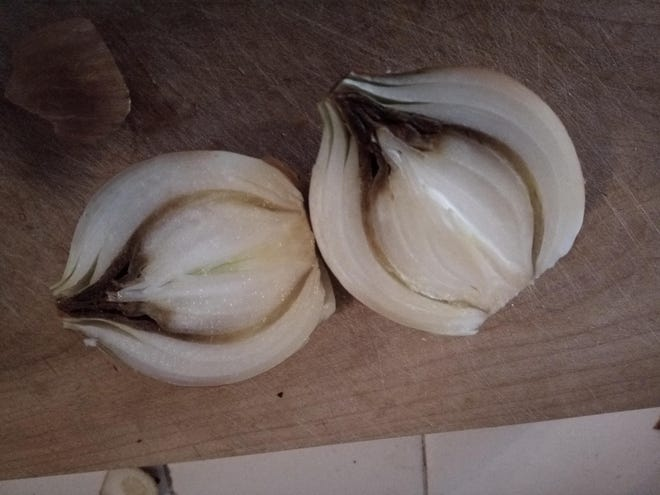 The outside of the bulb looked perfectly good but there was a layer inside that had rotted while the rest of the onion was fine.