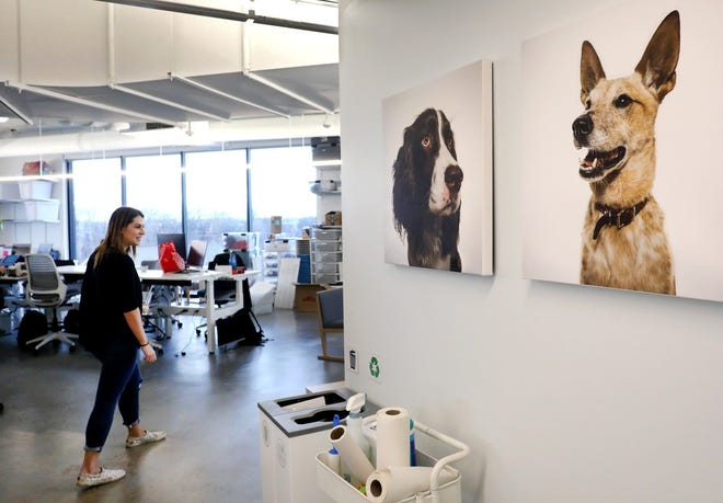 Bark, which moved its Columbus staff into these Franklinton offices last year, is seeking to go public.