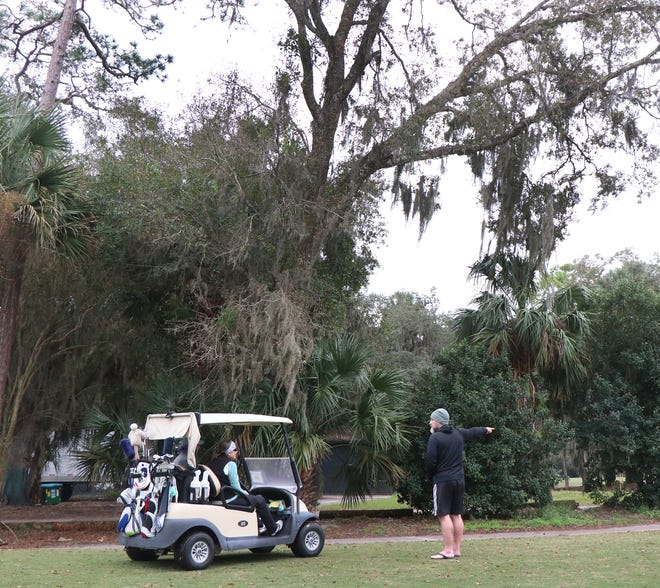 Jim Challender, a homeowner on the Palm Harbor Golf Course, talks to golfers Thursday about a telecommunications tower planned for the property behind the trees. Challender is one of many residents concerned about the location of the future tower being so close to homes.