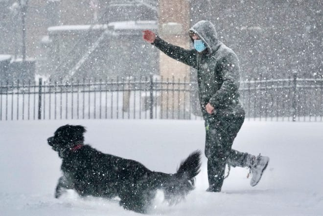 Dr. Charles Blomquist plays with his Newfoundland Daphne at St. Joseph's on Thursday, Dec. 17, 2020, in Pittsfield, Mass. (Ben Garver/The Berkshire Eagle via AP)