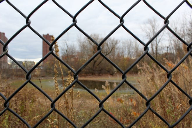 """Jerry's Pond, also known as """"Jerry's Pit,"""" has been fenced-in and overgrown since 1961."""