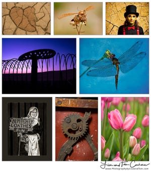 A collection of photographs by Lisa and Tom Cuchara.