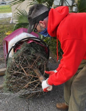 Matt Grutzik wraps a Christmas tree for a customer on Merritt Island, Fla. Dustin Grutzik, owner of Wisconsin Christmas Trees, says he has sold more than 1,200 trees since after Thanksgiving, and that he sold out his stock on Friday.