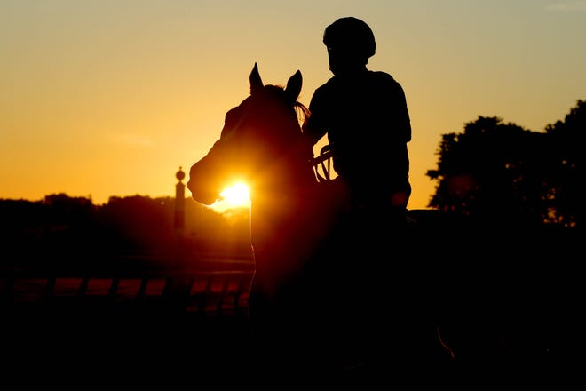 June 17: A horse and exercise rider walk onto the main track during a morning workout at Belmont Park.