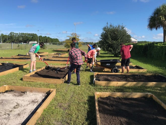 Students lend a helping hand at the Flagler Palm Coast High School's food garden.