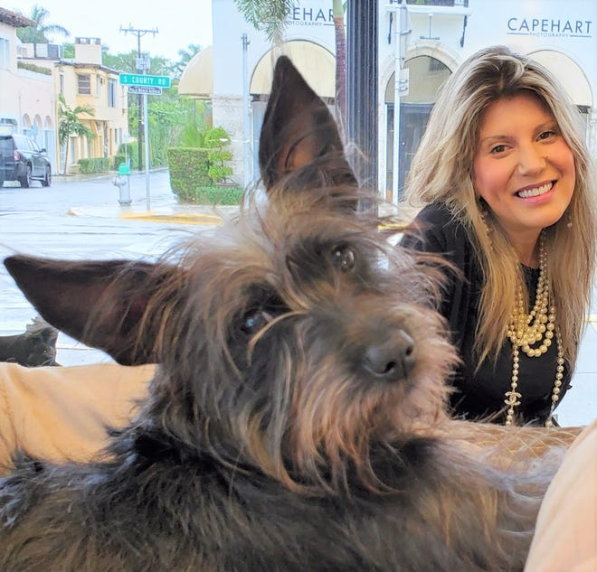 """Veronica, a """"Cretzer,"""" a Chinese crested/schnauzer was rescued from a Puerto Rican beach and adopted by John Archer (of Pierce Archer), whose daughter, Kathryn, is pictured in this photo."""